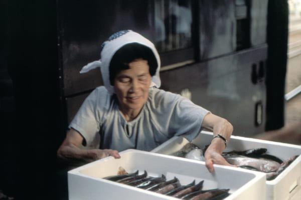 「日本の食卓を支える輸送の形 記憶と共に消えゆく貸し切り列車~行商列車の今昔物語~」のアイキャッチ画像